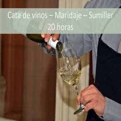 cata_de_vinos_maridaje_sumiller