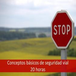 conceptos_básicos_de_seguridad_vial