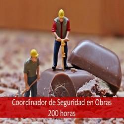 coordinador_de_seguridad_en_obras