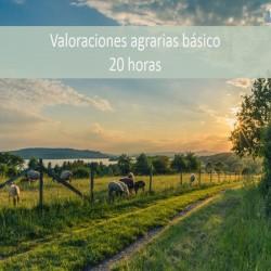 Valoraciones Agrarias básico