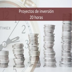 proyectos_de_inversion