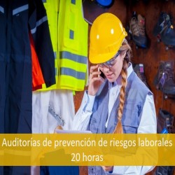 auditorias_de_prevencion_de_riesgos_laborales