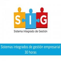 sistemas_integrados_de_gestion_empresarial