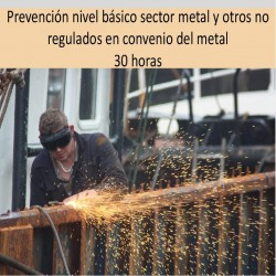 prevencion_nivel_basico_sector_metal_y_otros_no_regulados_en_convenio_del_metal