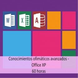 conocimientos_ofimaticos_avanzados_office_xp