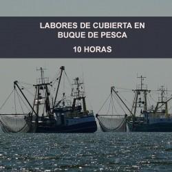 LABORES DE CUBIERTA EN...