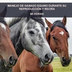 MANEJO DE GANADO EQUINO...