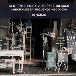 GESTIÓN DE LA PREVENCIÓN DE...
