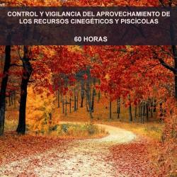 CONTROL Y VIGILANCIA DEL...