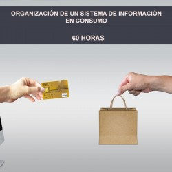 ORGANIZACIÓN DE UN SISTEMA...
